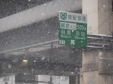 Tóquio - 8 de fevereiro de 2014